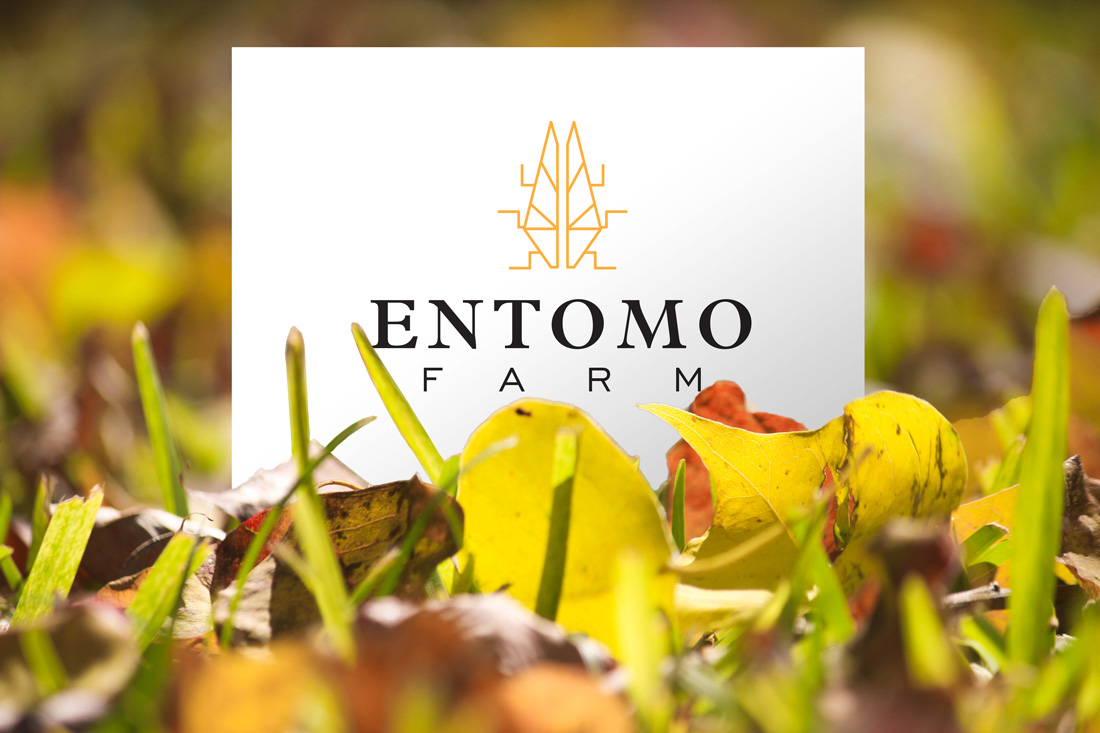 Entomo Farm - A to B communication