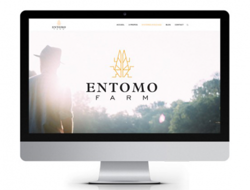 entomofarm-logo-site-crowfunding-startup