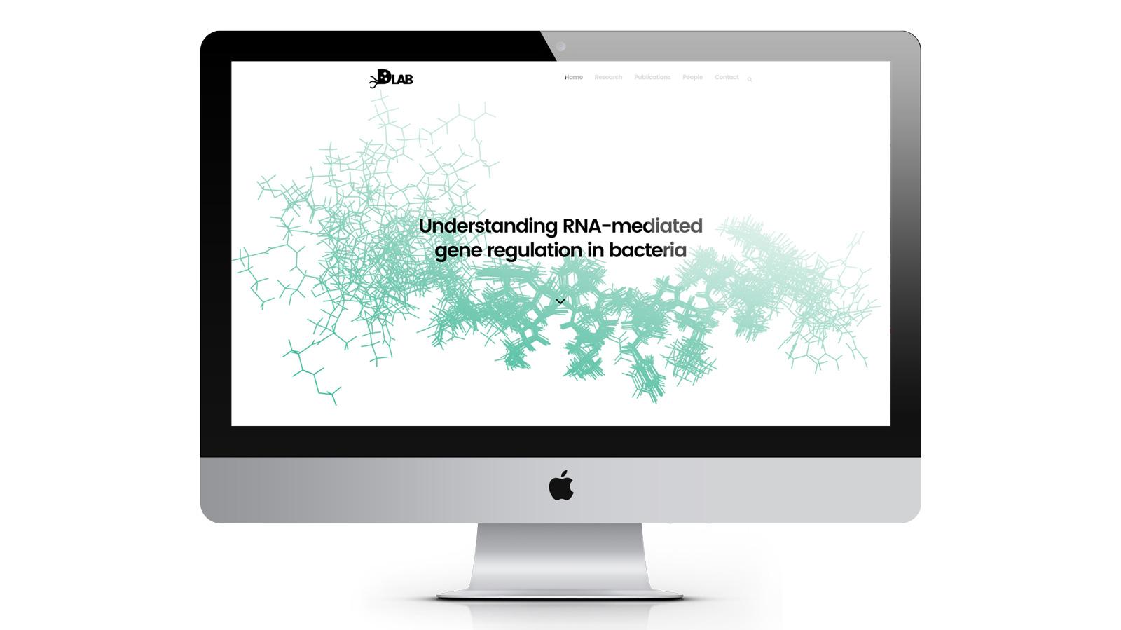 Darfeuille lab site web